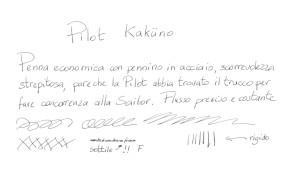 Scrittura Pilot Kakuno